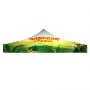Dye-Sub Canopy Graphic Only for Classic Tent 10 ft.